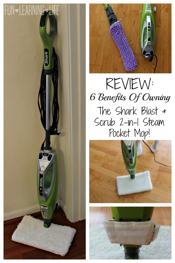2 in 1 steam mop reviews
