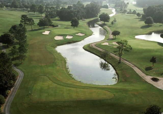 disney palm golf course review