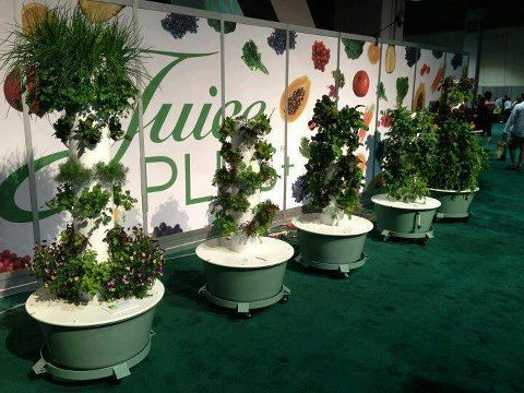 juice plus tower garden reviews