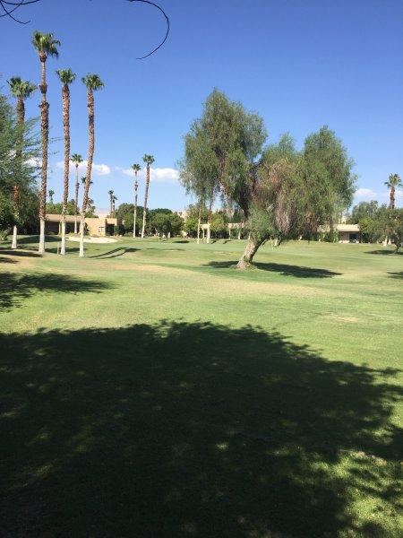 desert princess country club reviews